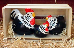 Norfolk<br> New Zealand Happy Hens
