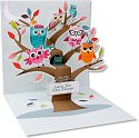 Owl Tree can be used to celebrate any special event.