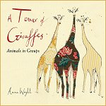 A Tower of Giraffes introduces young readers to some of the words we use to refer to animals in a group